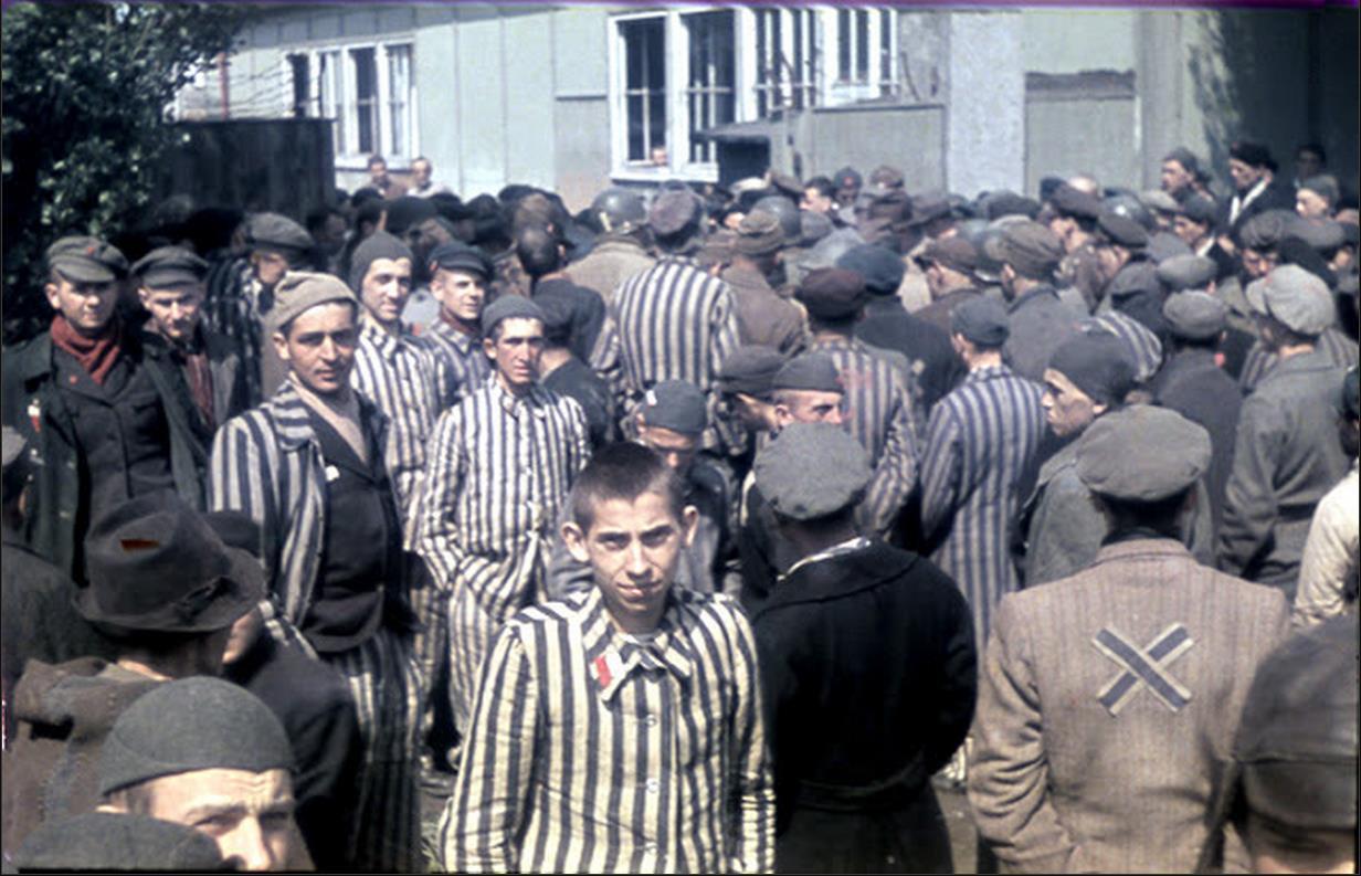 Life magazine holocaust pictures